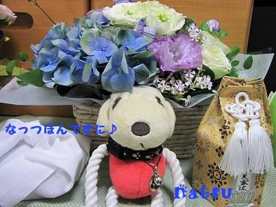 IMG_5991s-.jpg