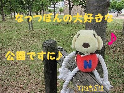 IMG_6028s-.jpg