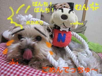IMG_6099s-.jpg