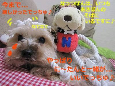 IMG_6100s-.jpg