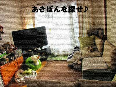 IMG_6995s- のコピー.jpg